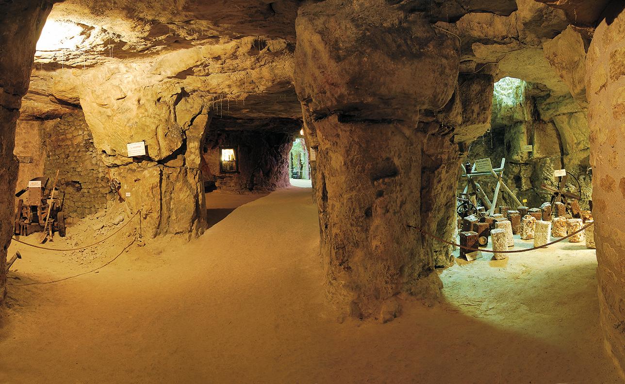 Cave Vivante du Champignon_bd