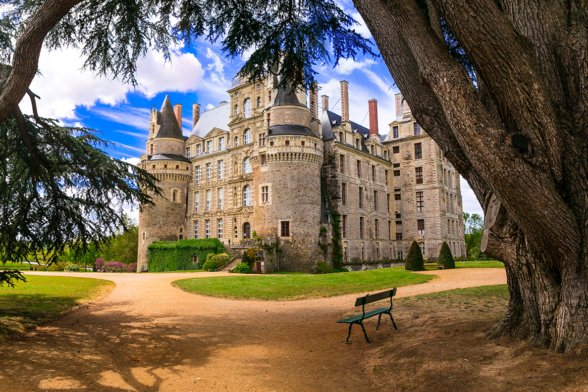 One of the most beautiful and mysterious castles of France - Cha